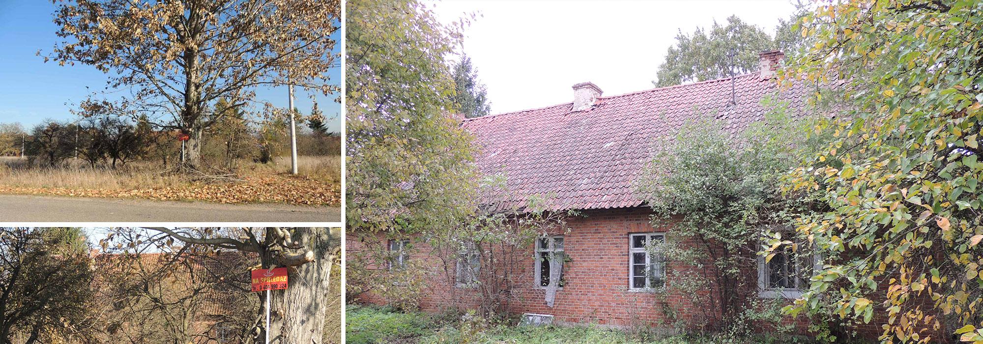 Siedlisko 1,21 ha – Maleczewo